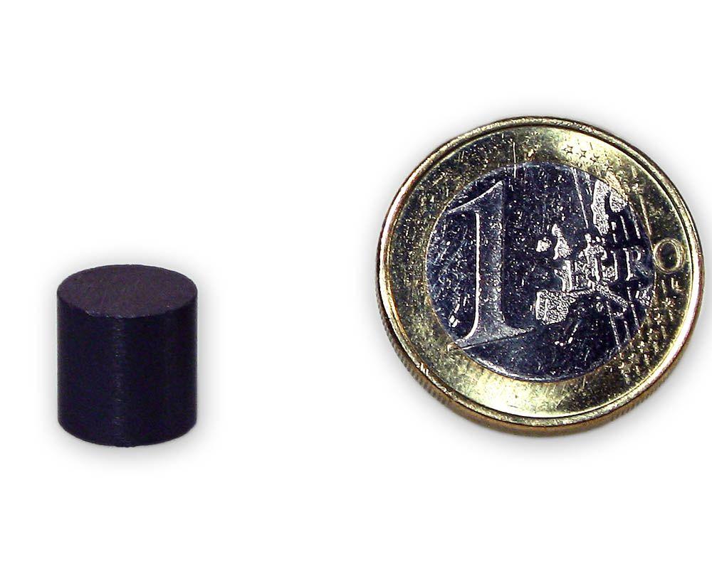 Scheibenmagnet Ø 10,0 x 10,0 mm Y30 Ferrit - hält 330 g